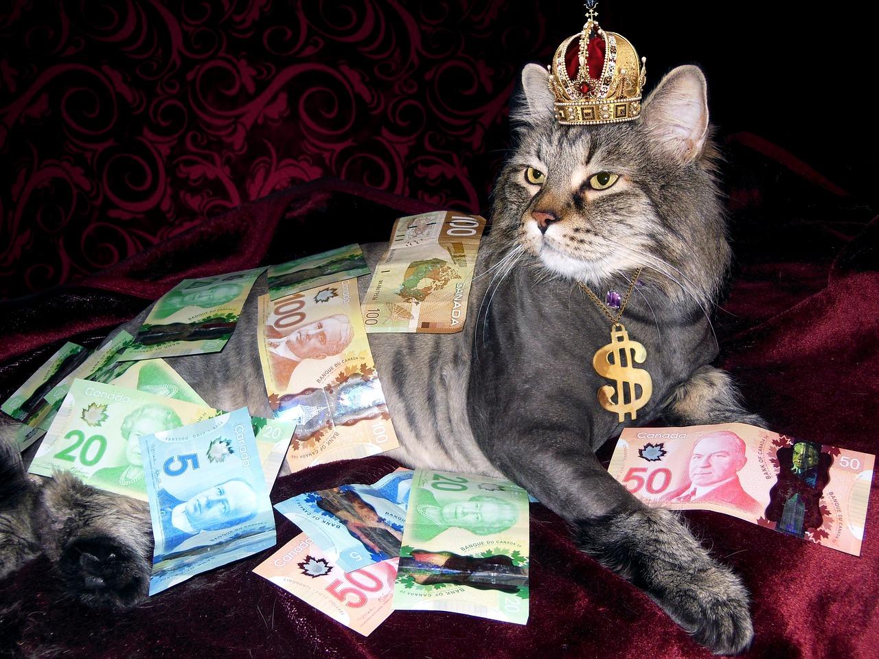 日本円を現地通貨に換金する3つの方法 1番ラクで得なのは海外送金?